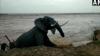 సముద్రుడి ఉగ్రరూపానికి బలి: కళింగపట్నంలో చొచ్చుకొచ్చిన అలలు!