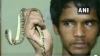 ఎగిరే పామును చూశారా.. అటవీ అధికారులకు చిక్కిందిలా..! (వీడియో)