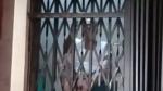 కంపెనీ నిర్లక్ష్యం .. తరచూ ఆగిపోతున్న లిఫ్ట్, వృద్ధుడి వినూత్న నిరసన