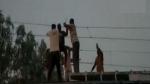 వీడియో వైరల్: రైల్వే కరెంట్ తీగలపై వ్యక్తి సర్కస్ ఫీట్లు..సిబ్బంది ఎలా కాపాడారో చూడండి