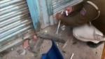 ఢిల్లీ అల్లర్లు: ఆప్ కౌన్సిలర్ తాహిర్ హుస్సేన్ ఫ్యాక్టరీ సీజ్ చేసిన పోలీసులు