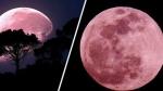 Super Pink Moon 2020: తేదీ, టైమ్ ఇదే, ఇండియాలో ఈ అద్భుతం ఎలా చూడాలంటే?