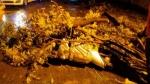 ఐటీ హబ్లో వర్ష బీభత్సం: స్కూటీపై వెళుతోన్న మహిళపై విరిగిపడ్డ చెట్టు, అక్కడికక్కడే మృతి..