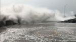 Nivar Cyclone: తుపాను ఎఫెక్ట్, హైల్ప్ లైన్, వాట్సాప్, ఫోన్ నెంబర్లు, తెలుగు ప్రజలు జాగ్రత్త, చెన్నై