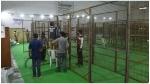 GHMC election results : నేడే జీహెచ్ఎంసీ ఎన్నికల ఫలితాలు... కౌంటింగ్కి అన్ని ఏర్పాట్లు పూర్తి...
