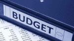 Union Budget 2021: సామాన్యుడి బడ్జెట్గా ఉండాలంటే ఎలాంటి జాగ్రత్తలు తీసుకోవాలి..?