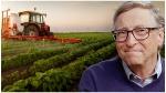 Bill Gates: అమెరికాలోనే పెద్ద రైతు -2.7లక్షల ఎకరాల సాగుభూమి -ఆ ఆలుగడ్డలే McDonald's ఫ్రైస్గా