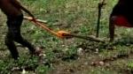 కొడుకే కాడెద్దు-ఆదిలాబాద్ రైతుకు అనుకోని కష్టం-ఆదుకోవాలని అధికారులకు విజ్ఞప్తి