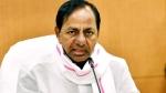 Telangana Cabinet: అనాథ పిల్లలు,మెడికల్ కాలేజీలు,సూపర్ స్పెషాలిటీ ఆస్పత్రులపై కీలక నిర్ణయాలు