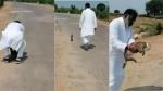 viral video:చెంబులో చిరుత కూన.. తెలియక వెళ్లిన నేత, తెలిసి పరుగో పరుగు..
