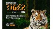 International Tigers Day:ప్రమాదపుటంచుల్లో పులులు.. దేశంలో ఎన్ని ఉన్నాయో తెలుసా..?