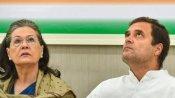 కాంగ్రెస్ పార్టీకి కొత్త అధ్యక్షుడు -ఎన్నికను ఖరారు చేసిన CWC -భేటీలో తీవ్రవాగ్వాదం