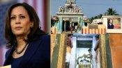 Kamala Harris: కమలా హ్యారీస్ మా బంగారం, ఇంటింటికి, తమిళ తంబీల ప్రేమ, ట్రంప్ తలపై టవలేసి !