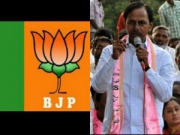 Demand to BJP in Telangana