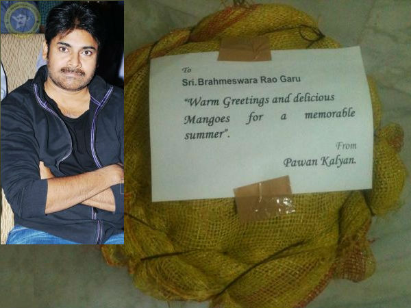 power star sent mangoes from his own farm