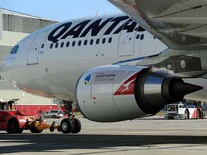 Python clings to Qantas wing on two hour flight