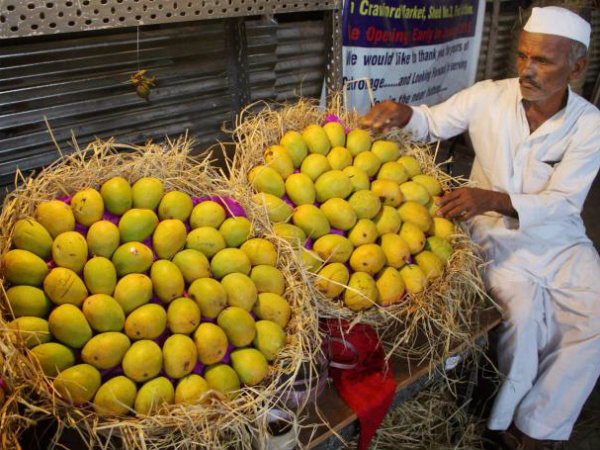 Celebrated Mango Grower Haji Kalimullah Has Come With New Mo
