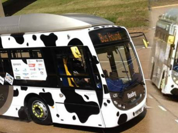 Cow poo bus record speed 123.57 kilometres per hour.