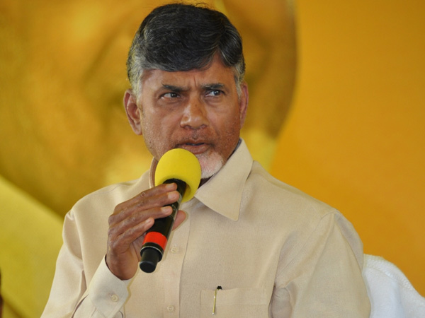 Agriculture plays key role in andhra pradesh development: Chandrababu naidu