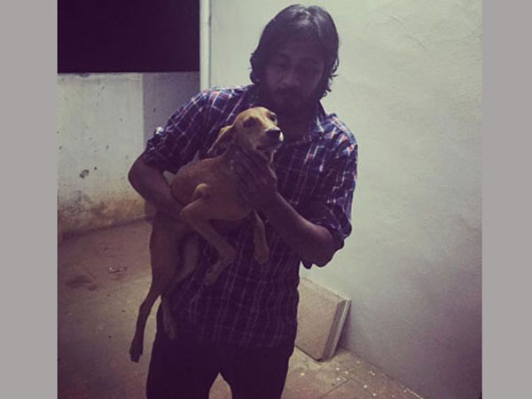 Medical student who flung dog off rooftop released on bail