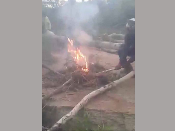 Horrifying moment dog is set on fire as sick yobs laugh