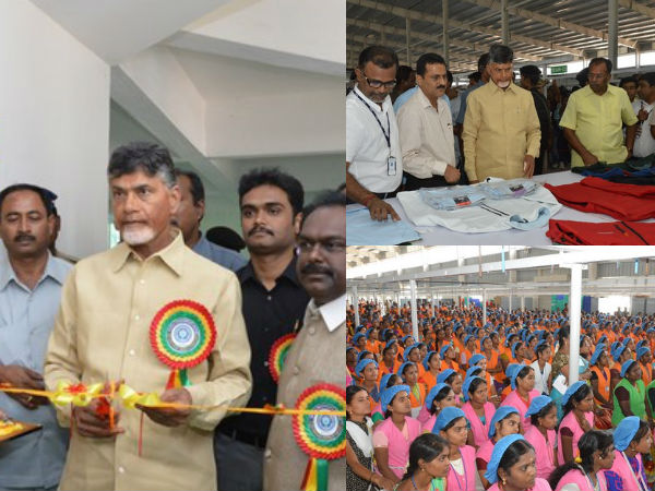Chandrababu Tours Kuppam On Monday