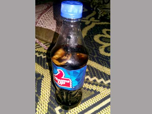 Dead lizards in a Thums up bottle