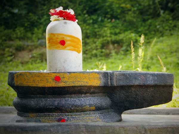 What should we do on Sivaratri?