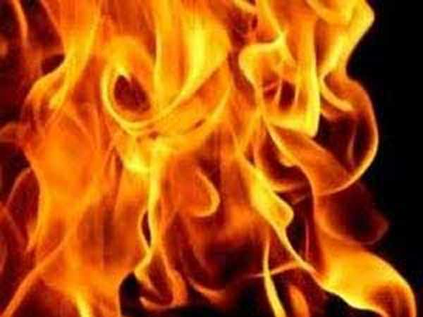 Jodhpur: 20 year old girl burnt alive for protesting against chopping of trees
