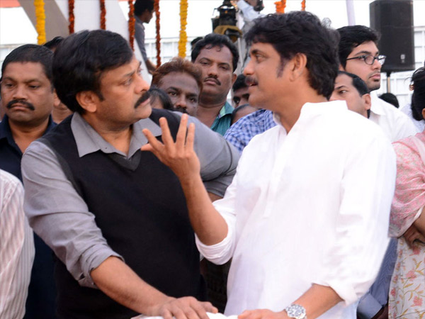 Will Nagarjuna Join Politics