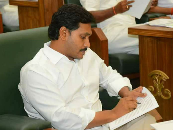 Many Leaders Comparing Ys Jagan With Ys Rajasekhar Reddy