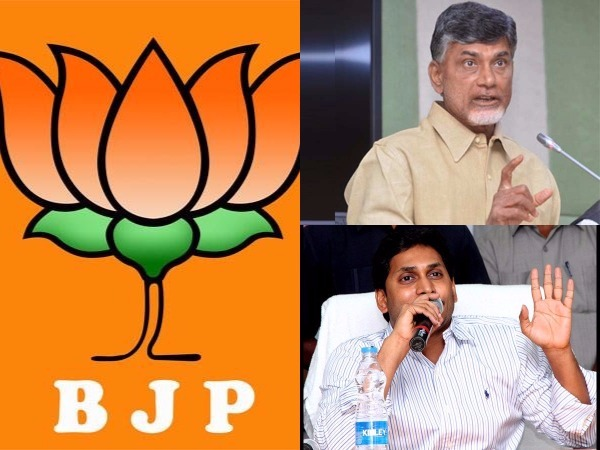 Who Will Win Kakinada Municipal Elections
