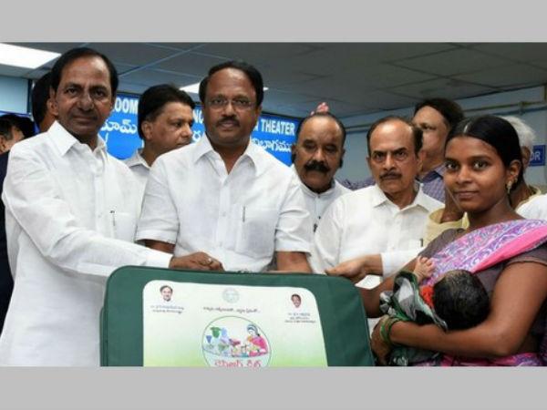 Dengue Swine Flu Fevers Serious Telangana