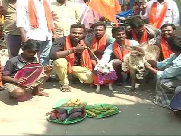 Dog Donkey Married Amid Valentine S Day Protest Chennai