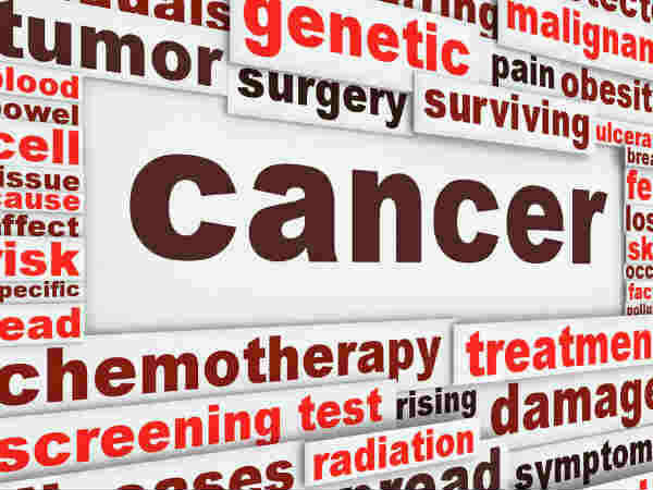 Indian American Scientist Awarded Grant Cancer Research