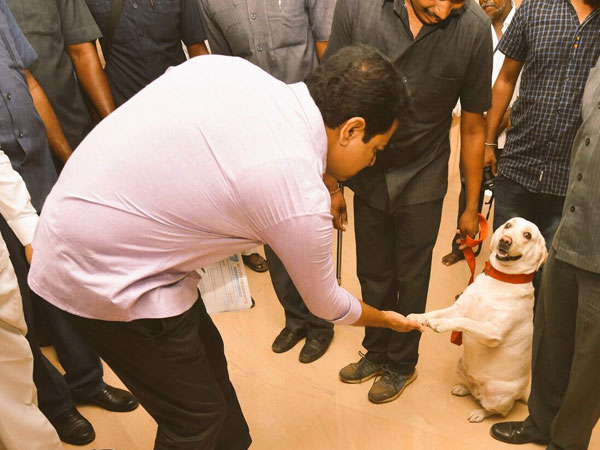 Police Canine Offered Warm Handshake With Ktr