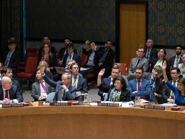 U.N. Security Council Rejects Russian Resolution Condemning Syrian Strikes