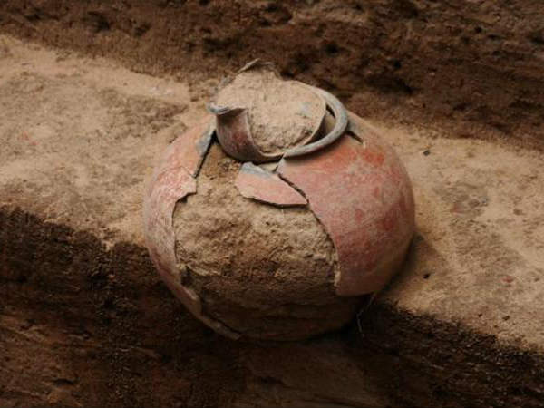 Gold unearthed in Keezhadi site excavations