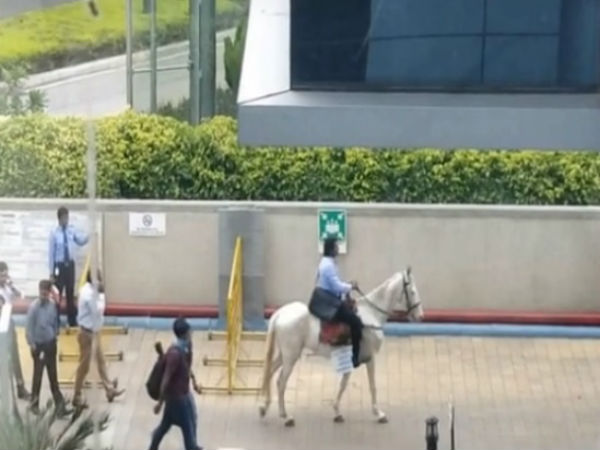 Fed Up of Bengaluru Traffic, Techie Rides a Horse to Work on Last Day, Becomes Internet Sensation