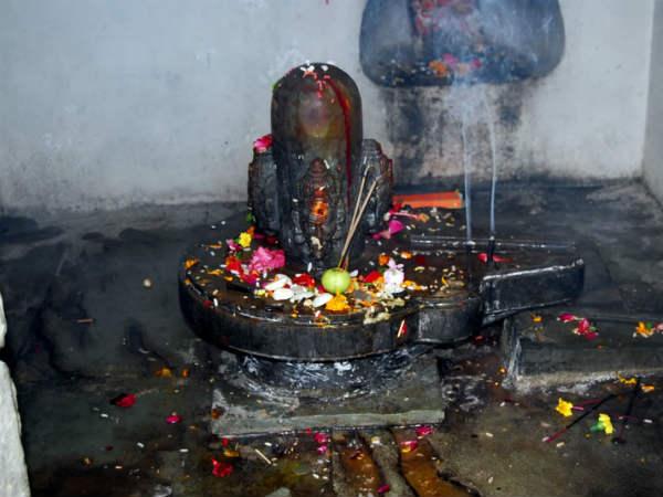 నాగుపాము కాపలా...విగ్రహాలు,నగలు భధ్రం