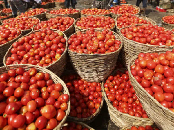 Tomato rate falls drastically to Rs.2 a kilo