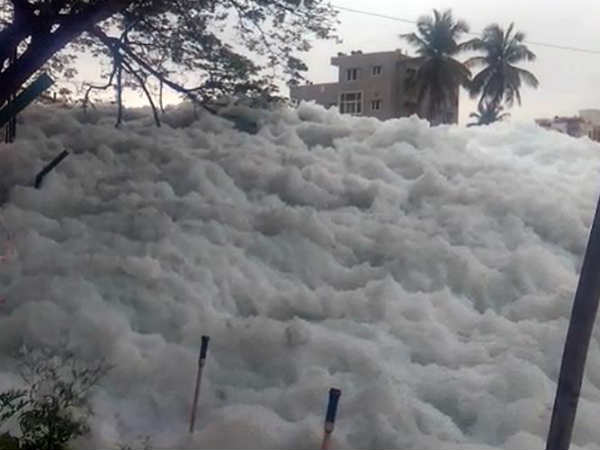 ఇది స్విట్జర్లాండ్లో మంచు కాదు... బెంగళూరులో బెల్లందూర్ సరస్సు