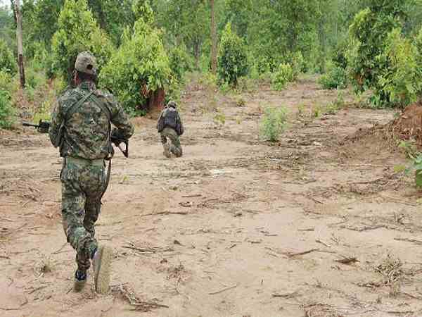 Odisha: Five Naxals Killed in Encounter Between Security Forces And Militants in Kalimeda