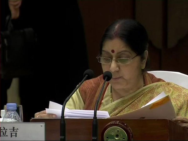 Paks refusal to act on terror groups prompted India to take preemptive action: Swaraj