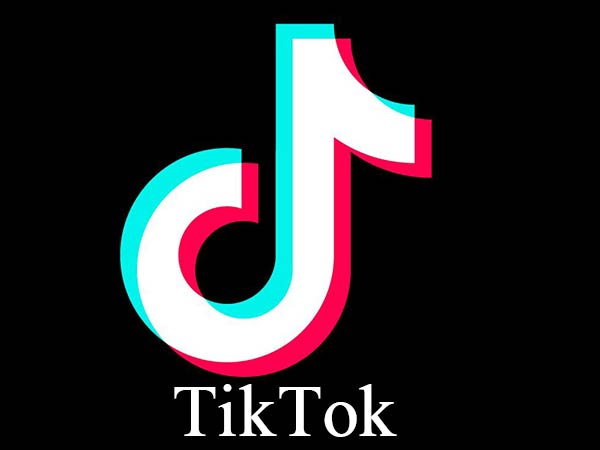 ban on tiktok app will be lifted if madras high court doesnt decide : SC