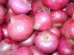 Onions distributed to polling parties in Jhabua,madhya pradesh