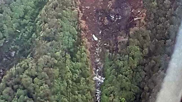 First Image Of Air Forces An-32 Crash Site Shows Debris, Charred Trees