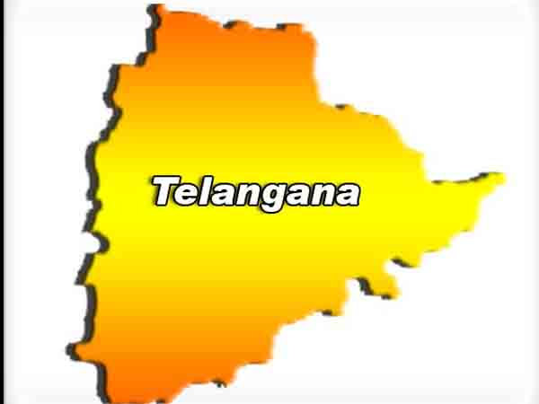 Telangana Formation Day Celebrations Held By America