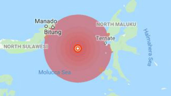 Strong earthquake hits Indonesia, tsunami warning lifted