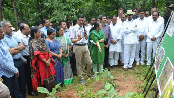 cm kcr forest tour in komatibanda with collectors